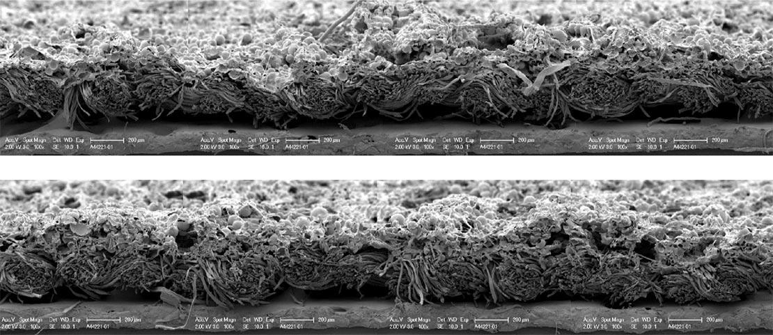 Fabrican cotton strip